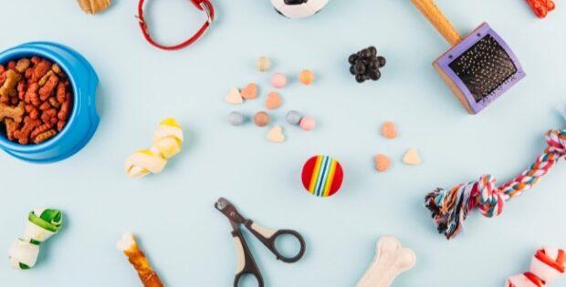 ensemble d'accessoires et jouets pour chiens