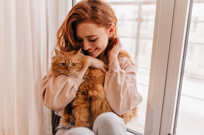 prendre soin de son chat